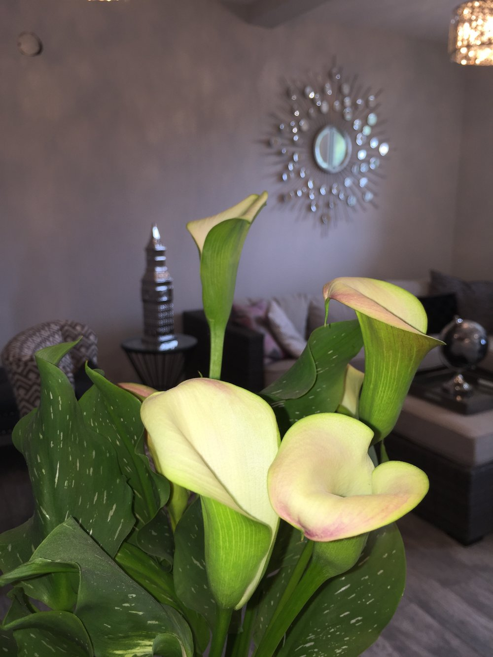 Flower in Reception